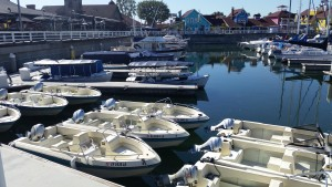Long Beach Boat Rentals