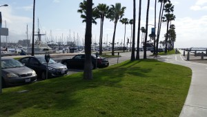 Shorline Marina parking